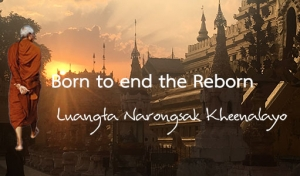 Born to end the Reborn